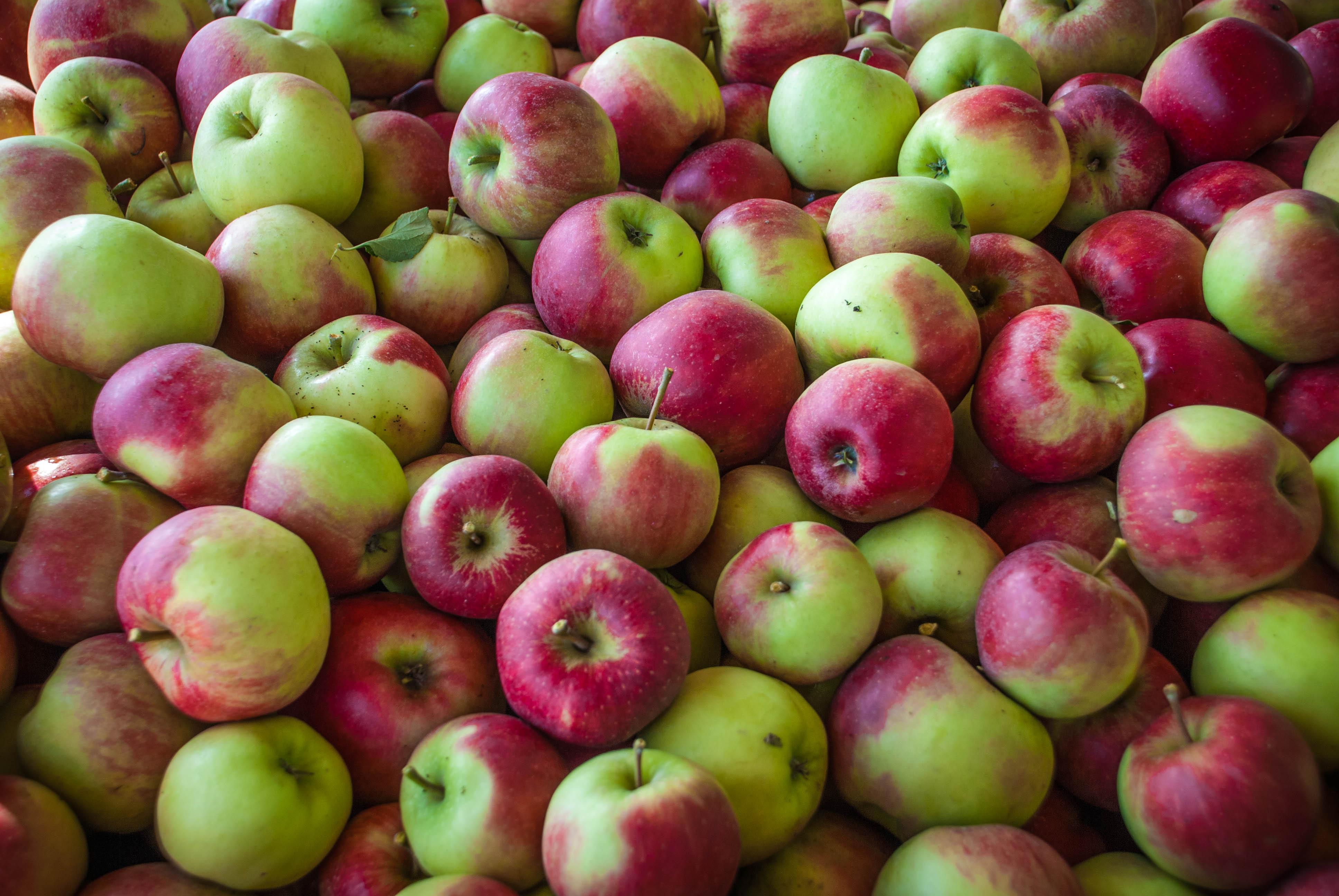 Äpfel aus dem alten Land