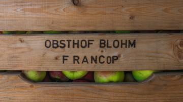 20150928Obsthof Blohm-20-2