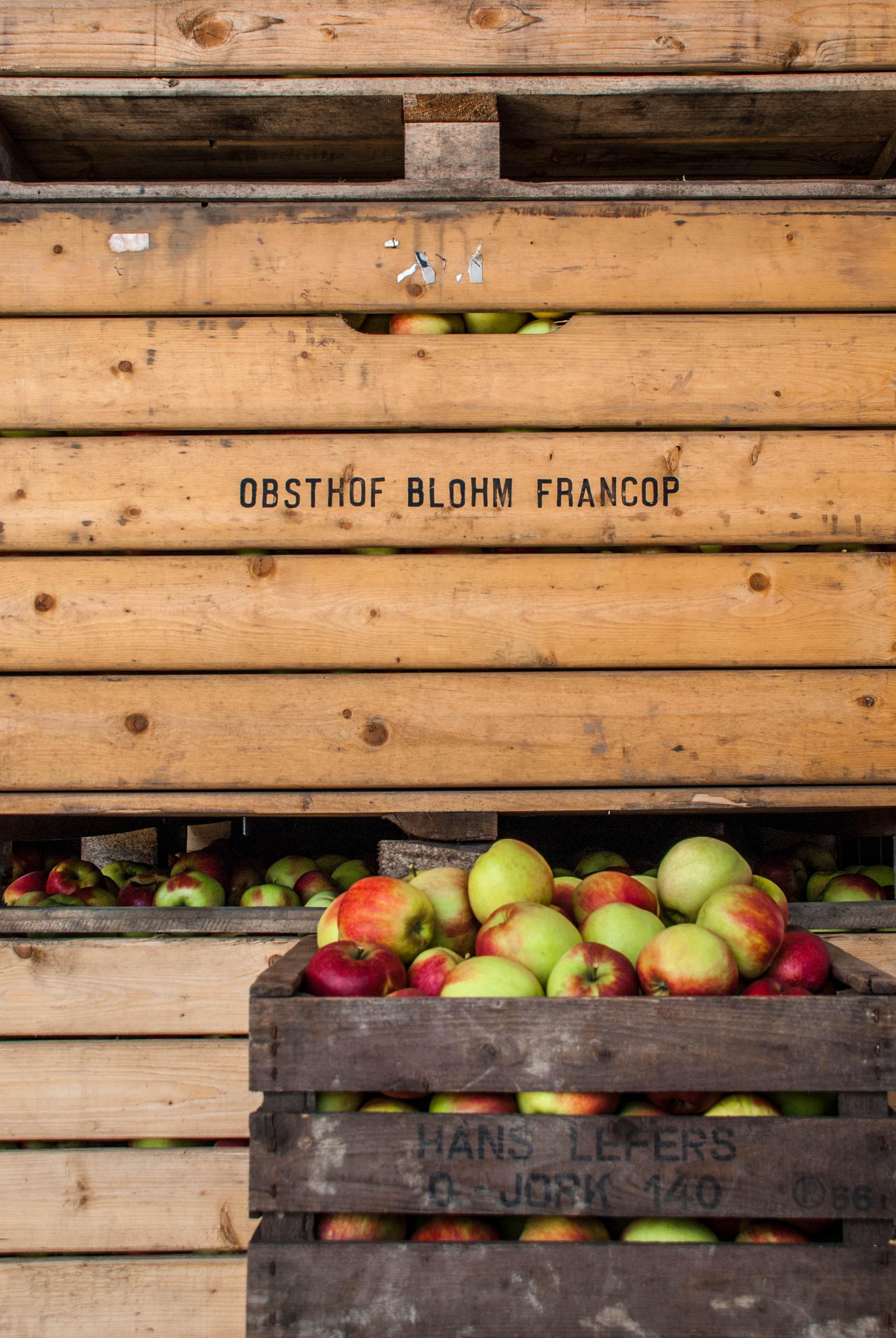 Obstkästen
